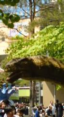 菊池隆志 公式ブログ/『恐竜出没!?( ゜_゜) 』 画像3
