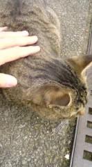 菊池隆志 公式ブログ/『動きたくニャいo(^-^)o 』 画像2
