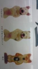 菊池隆志 公式ブログ/『正座犬!?o(^-^)o 』 画像3