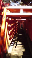 菊池隆志 公式ブログ/『山王日枝神社ぁ♪o(^-^)o 』 画像3