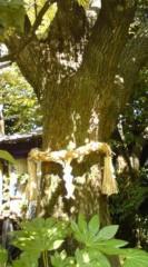 菊池隆志 公式ブログ/『御本殿♪& 御神木♪(  ̄▽ ̄)』 画像2