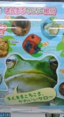 菊池隆志 公式ブログ/『まんまるカエル♪(  ̄▽ ̄)』 画像1