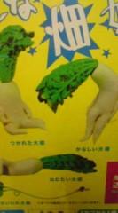 菊池隆志 公式ブログ/『様々な大根♪o(^-^)o 』 画像2