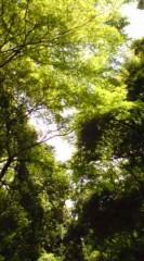 菊池隆志 公式ブログ/『緑ぃ♪o(^-^)o 』 画像2