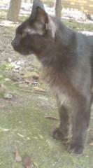 菊池隆志 公式ブログ/『鬣(たてがみ)黒さんo(^-^)o 』 画像2