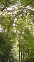 菊池隆志 公式ブログ/『自然の恵み♪o(^-^)o 』 画像1