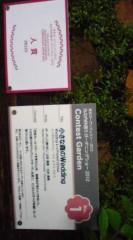 菊池隆志 公式ブログ/『小さな森のWeddingo(^-^)o 』 画像1