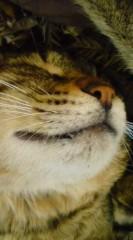 菊池隆志 公式ブログ/『爆睡♪o(^-^)o 』 画像3