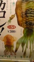 菊池隆志 公式ブログ/『イカコレ♪o(^-^)o 』 画像3