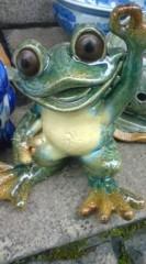 菊池隆志 公式ブログ/『猫&梟& 蛙&亀♪o (^-^)o』 画像2