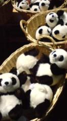 菊池隆志 公式ブログ/『パンダ切手& 顔出しパネル♪』 画像2