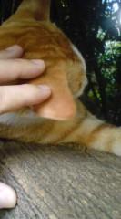 菊池隆志 公式ブログ/『こちらも寝るo(^-^)o 』 画像2