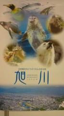 菊池隆志 公式ブログ/『旭川動物園♪o(^-^)o 』 画像1
