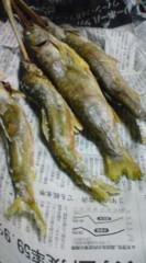 菊池隆志 公式ブログ/『鮎に岩魚♪o(^-^)o 』 画像1