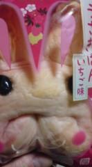 菊池隆志 公式ブログ/『うさぎぱんo(^-^)o 』 画像1