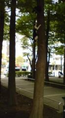 菊池隆志 公式ブログ/『バトル!?o(^-^)o 』 画像1
