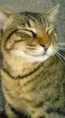 菊池隆志 公式ブログ/『虎顔♪o(^-^)o 』 画像2