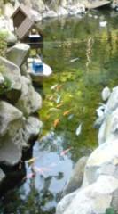 菊池隆志 公式ブログ/『滝&鯉& 神社o(^-^)o 』 画像2