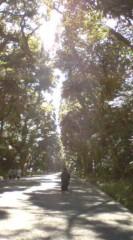 菊池隆志 公式ブログ/『明治神宮♪(  ̄▽ ̄)』 画像2