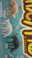 菊池隆志 公式ブログ/『脱力猫フィギュア♪o(^-^)o 』 画像3