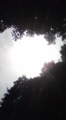 菊池隆志 公式ブログ/『光と緑♪o(^-^)o 』 画像1