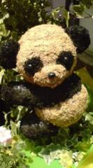 菊池隆志 公式ブログ/『パンダ♪ウサギ♪ゾウ♪』 画像1