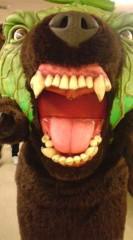 菊池隆志 公式ブログ/『リアル!? メロン熊!!o(^-^)o 』 画像1