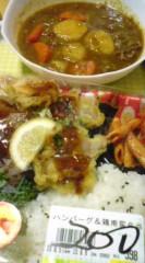 菊池隆志 公式ブログ/『ハンバーグと鶏南蛮弁当& カレー♪』 画像1