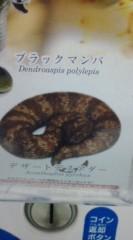 菊池隆志 公式ブログ/『毒へび!?( ゜д゜;)』 画像3