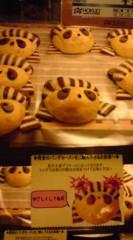菊池隆志 公式ブログ/『パンダカーメン!?( ゜_゜) 』 画像2