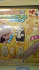 菊池隆志 公式ブログ/『つみネコ!?o(^-^)o 』 画像1