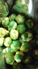菊池隆志 公式ブログ/『グリーン豆♪o(^-^)o 』 画像2