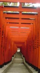 菊池隆志 公式ブログ/『稲荷参道♪(  ̄▽ ̄)』 画像2