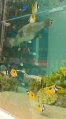 菊池隆志 公式ブログ/『銀座で美ら海水族館♪』 画像1