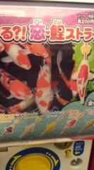菊池隆志 公式ブログ/『カープファンアイテム!? 』 画像1