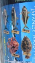 菊池隆志 公式ブログ/『日本の魚♪o(^-^)o 』 画像2