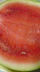 菊池隆志 公式ブログ/『スイカ食べます♪(  ̄▽ ̄)』 画像2