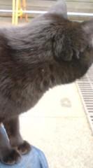 菊池隆志 公式ブログ/『黒さんo(^-^)o 』 画像2