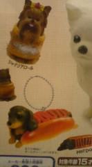 菊池隆志 公式ブログ/『いぬぱん2 ♪o(^-^)o 』 画像2