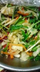 菊池隆志 公式ブログ/『野菜サンドウィッチぃ♪o(^-^)o 』 画像1
