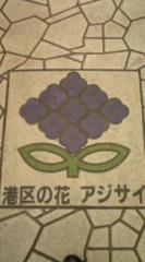 菊池隆志 公式ブログ/『港区の花!?o(^-^)o 』 画像2