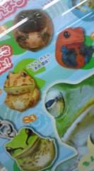 菊池隆志 公式ブログ/『まんまるカエル♪(  ̄▽ ̄)』 画像3