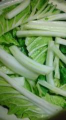 菊池隆志 公式ブログ/『白菜で蓋♪(  ̄▽ ̄)』 画像1