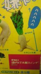 菊池隆志 公式ブログ/『様々な大根♪o(^-^)o 』 画像3