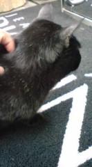 菊池隆志 公式ブログ/『ザギンの黒�♪o(^-^)o 』 画像2