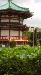 菊池隆志 公式ブログ/『不忍池(  ̄▽ ̄)』 画像3