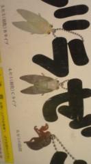 菊池隆志 公式ブログ/『ノンフライアブラゼミ!?( ゜_゜) 』 画像3