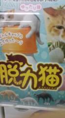 菊池隆志 公式ブログ/『脱力猫フィギュア♪o(^-^)o 』 画像1