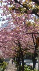 菊池隆志 公式ブログ/『銀座桜通りo(^-^)o 』 画像2