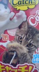 菊池隆志 公式ブログ/『猫キャッチ♪(  ̄▽ ̄)』 画像3
